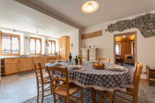 Appartamento a Selva di Cadore - Cesa al Monech