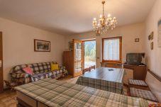 Appartamento a Falcade - Casa Carla PT - Stagione invernale
