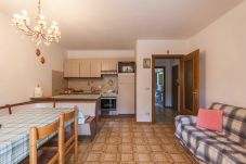 Ferienwohnung in Falcade - Casa Carla PT - Stagione invernale