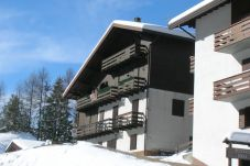 Apartment in Rocca Pietore - Condominio Edera Mansarda