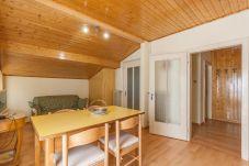 Apartment in Falcade - Casa Katia - Stagione invernale